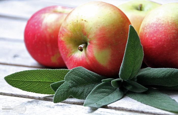 vispilanviemaa_omenaiset_porsaankyljykset2